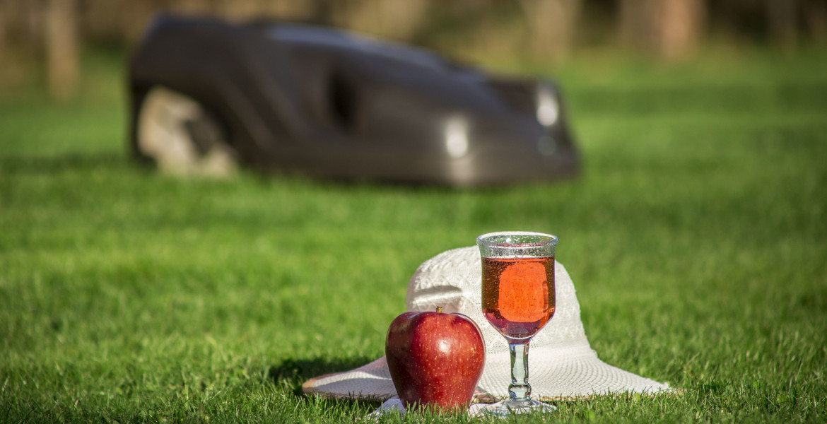 Enjoy more free time in the garden while automatic lawn mower mows the lawn concept, focus on glass, book,apple and summer hat. More spare time concept.